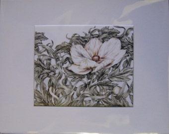 "8x10"" White Flower (Lung Cancer)"