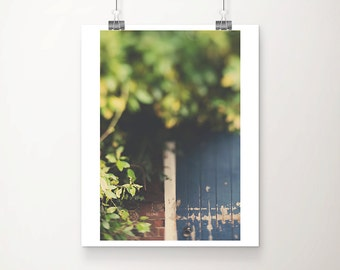 blue door photograph love photograph english garden photograph blue home decor romantic photograph green leaf photograph