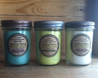 THREE 8 oz. 100% Soy Candles with Hand Dipped Hemp Wicks- Organic- VEGAN Eco friendly Renewable and  GMO Free