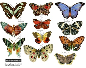 VICTORIAN BUTTERFLIES 11 Nature Illustrations, Hi Res jpg and png, Instant Download Printable Digital Collage Sheet 14-004