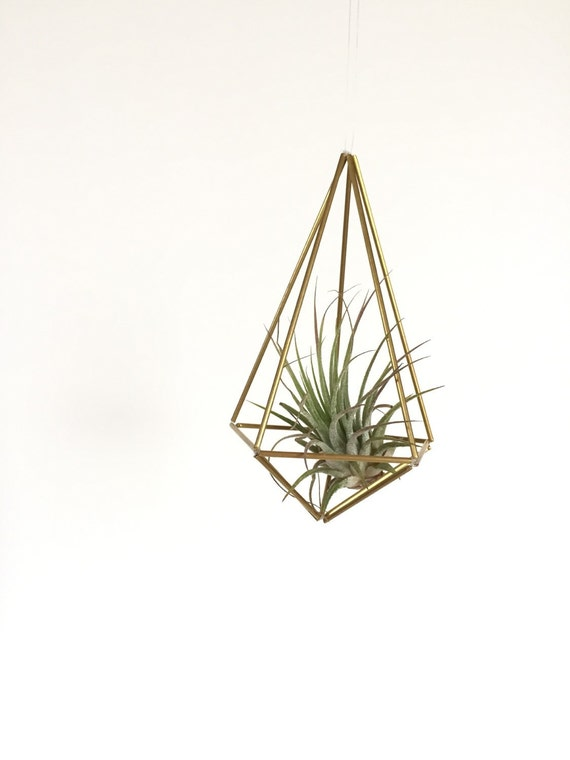 Brass geometric shape, hanging planter, hanging air plant, gold hanging terrarium, geometric mobile, with free air plant