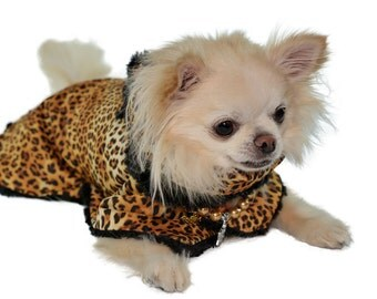 Cheetah Reversable Raincoat