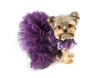 Purple Razzle Me Dazzle Dress