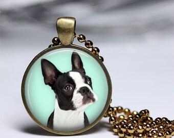 dog boston terrier buldog french bulldog picture pendant necklace