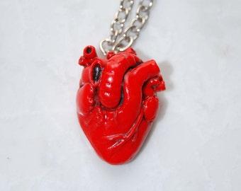 Anatomical Human Heart Pendant