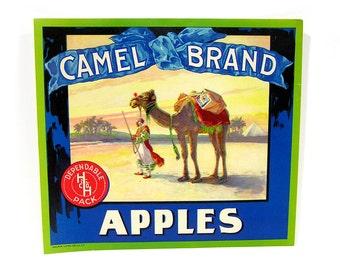Vintage 1910s Fruit Crate Label Camel Brand Apples