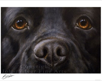 Black Labrador Dog Portrait by award winning artist JOHN SILVER. Personally signed A4 or A3 size Print. BL006SP
