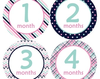 Baby Month Stickers Baby Monthly Stickers Girl Monthly Bodysuit Stickers Baby Shower Gift Photo Prop Baby Milestone Sticker 206