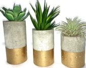 "Concrete Succulent Planters. Urba planters (set of 3) Gold.  Enter Promo code ""LOVE1"" to recieve 10% off entire order."