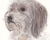 Custom Pet Portrait - matted watercolor sketch of your favorite furry friend!