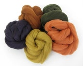 Felting Wool Bundle - Autumn/Fall Merino Tops