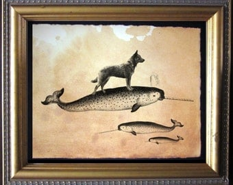 Australian Cattle Dog Riding Narwhal - Vintage Collage Art Print on Tea Stained Paper -  dog christmas gift