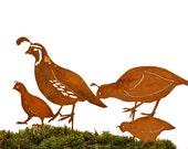 Quail Family - Garden Pick with Rusty Patina | Metal Quail Silhouette Stakes Yard Art | Rusty Birds by Elegant Garden Design