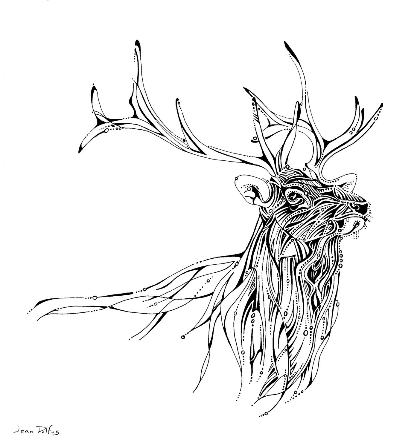 Line Drawings Of Animals Deer : Elk line drawing illustration wildlife artwork unique