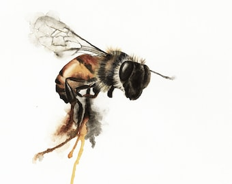 Dripping Bee Watercolor Print