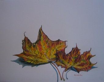 Limited edition colour print of original drawing of Autumn Leaves