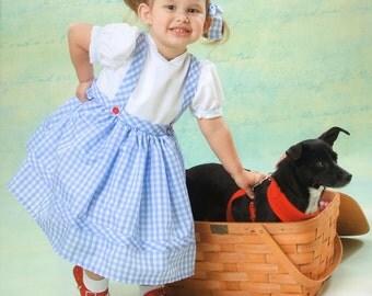 Dorothy/Oz dress