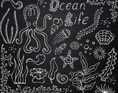 White Ocean life clipart, PNG, Doodle clipart, Hand drawn, Photo overlay, clip art, For Personal and Commercial Use