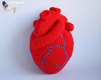 Amigurumi human heart.