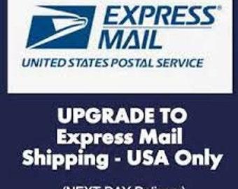 Upgrade to USPS Express Mail 1-2 Days - GraciousGiggles
