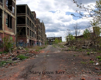 Architecture Photography - Detroit - Packard Plant 4