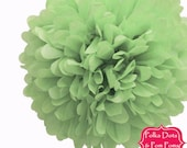 1 x 35cm Pastel GREEN Tissue Paper POM POM / Pompom / Paper Flower / Birthday Party Decoration Ideas and Supplies / Wedding / Baby Shower