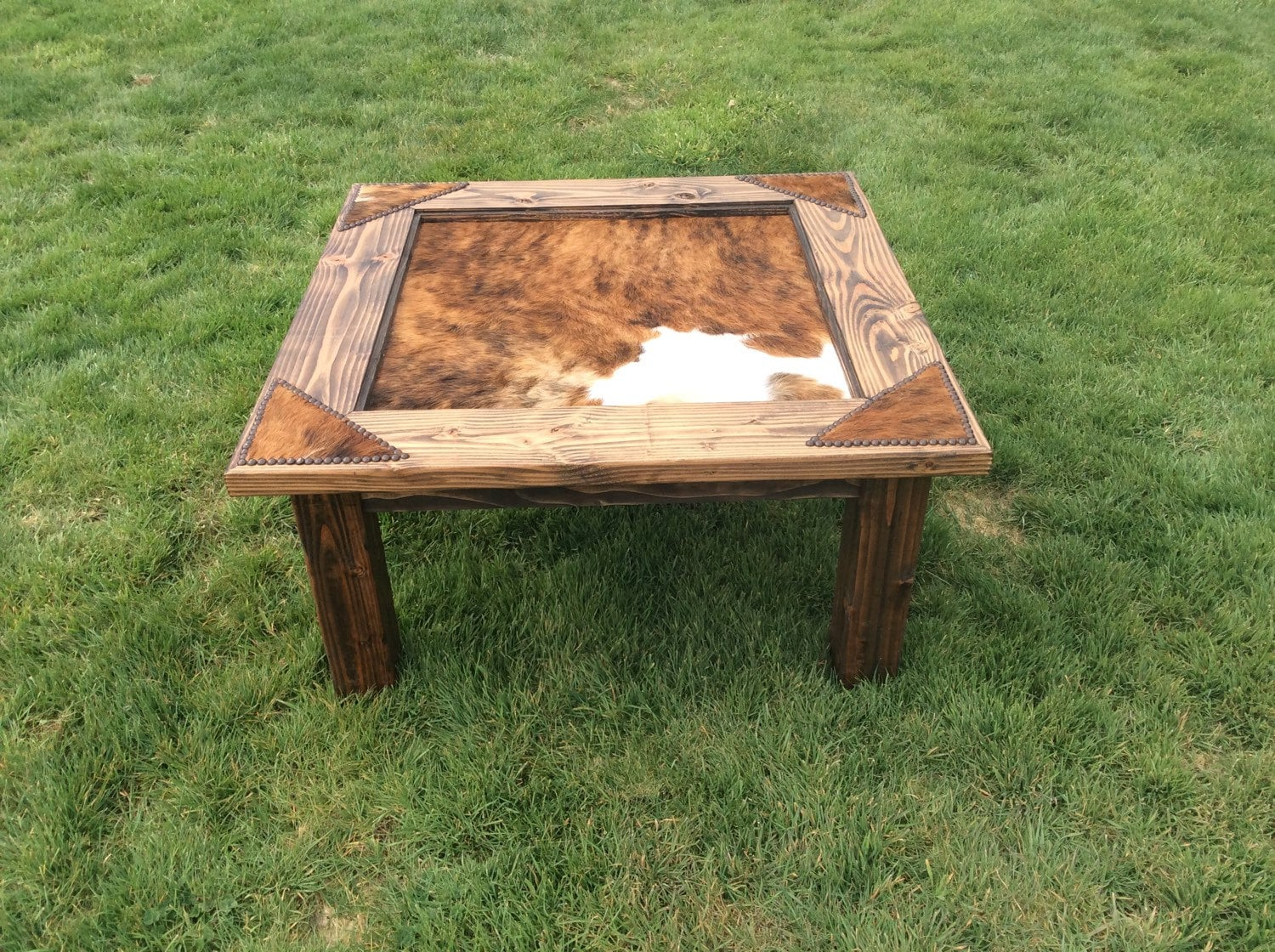 Cowhide Coffee Table With Glass Top Nailheads Western