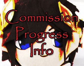 COMMISSION PROGRESS INFORMATION