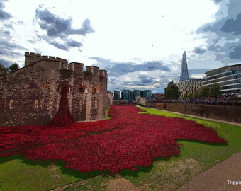 Tower of London 2014. Photo print. First World War Centenary. Red Ceramic Poppies. Home Decor. Photo no 4