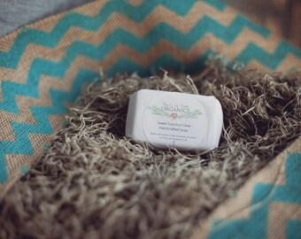 Natural Goat's Milk Soap - Coconut Lime