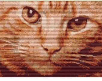 CROSS STITCH KIT- Ginger Cat 26cm x 17cm