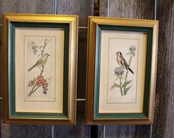 Pair of Vintage Signed Original Garden Bird & Botanical Colored Etchings OOAK