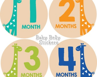 Baby Month Stickers, Monthly Baby Stickers, Monthly Milestone Stickers, Baby Monthly Stickers, Baby Belly Stickers, Baby Boy Giraffe
