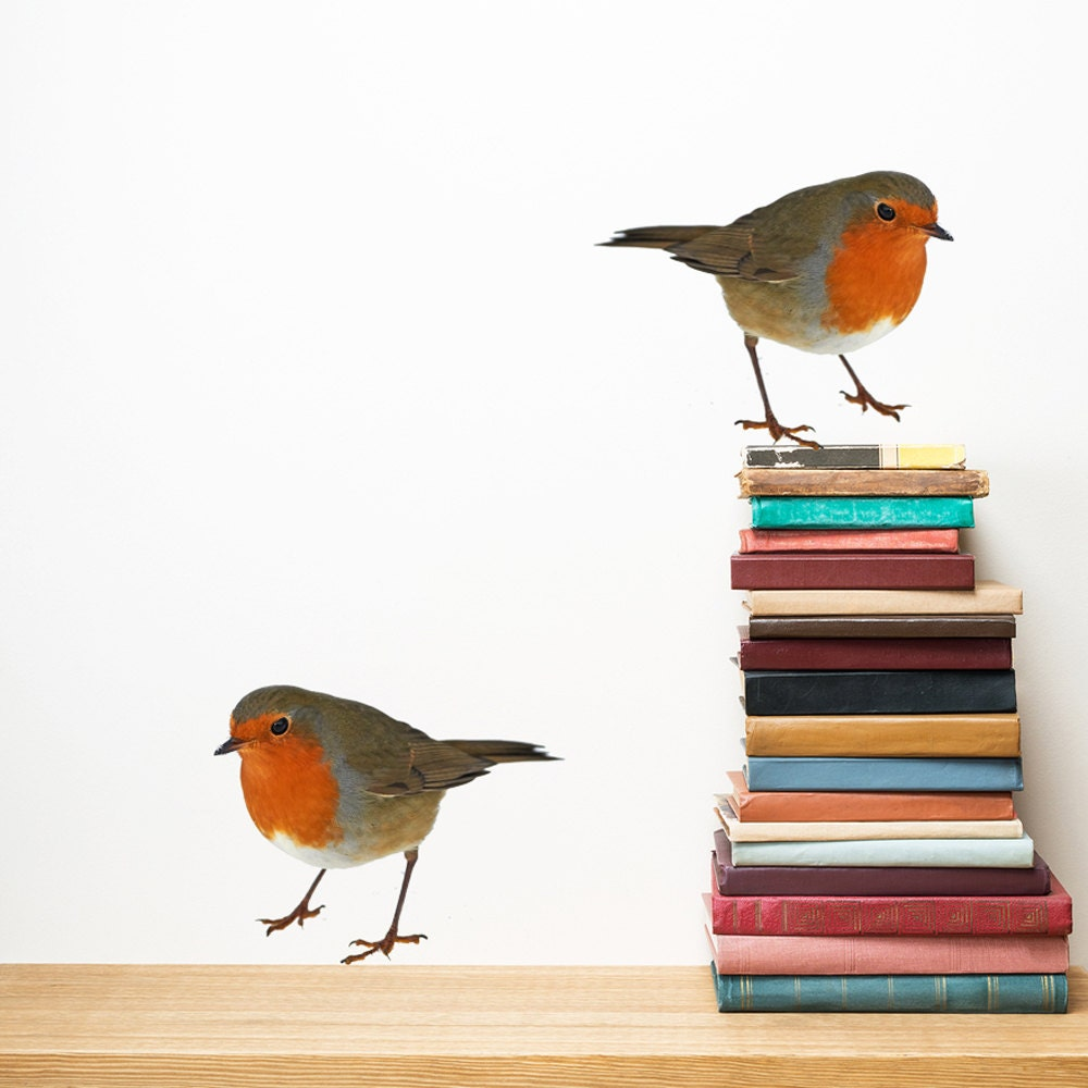 Robin wall decals set of 2 bird wall sticker decal home decor zoom amipublicfo Image collections