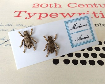 Brass Beetle Stud Earrings
