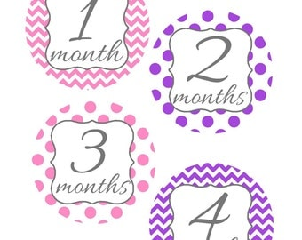 Milestone Stickers, Baby Month Stickers, Pink and Purple, , Monthly Baby Sticker, Baby Shower Gifts, Baby Month Sticker Girl, G39