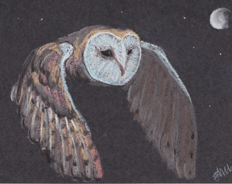 Barn Owl print - taken from an original pastel drawing.