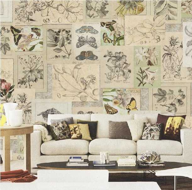 botanical wallpaper vintage shabby chic butterfly plant herb. Black Bedroom Furniture Sets. Home Design Ideas