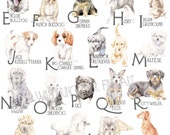 ABC Dog Breeds Alphabet Poster - Original Watercolors