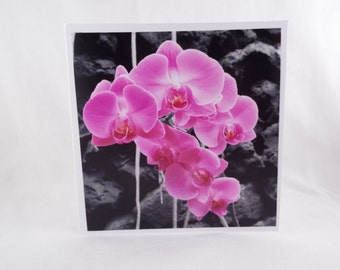 Splash of Colour: Pink To Make Them Wink (Square Blank General Use Card)