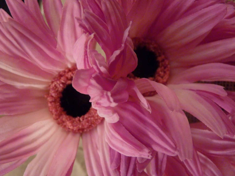 Pink Gerbera Daisy Wedding Bouquet By BloomingMoonDesigns