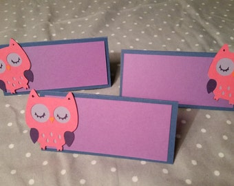 12 Owl Place Cards