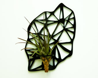Air-Pflanze-Halter. Kühlschrank-Magnet.