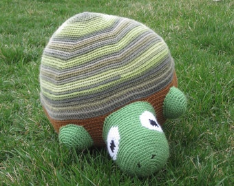 Timmy the Timid Turtle Pattern