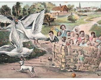 1907 surreal baby postcard geese nursery rhyme image