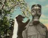 Funny Skunk Artwork, Gag Gift, Gas Mask Art, Strange Humor Gasmask Art, Funky Skunky Bizarre Postcard, Original Collage, White Elephant Gift