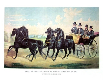 Currier and Ives Print - The Celebrated Four In Hand Stallion Team - 1968 Vintage Book Page - 12 x 9
