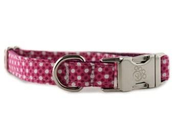 Raspberry Tiny Dot Dog Collar - Purple Tiny Polka Dot Dog Collar - fuchsia dog collar - purple dog collar - FREE SHIPPING