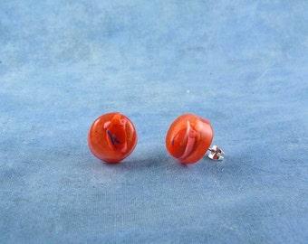 Heart Encapsulated Specimen Earrings, Handmade Biology Jewelry