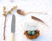 Wedding Place Cards, Nest Favors Robin Egg Blue Eggs,  20 Woodland Rustic Fairytale Classic Shabby Chic Country Theme Baby Shower